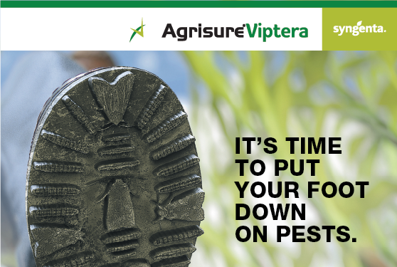 Protect corn hybrids with the only trait on the market that effectively controls western bean cutworm