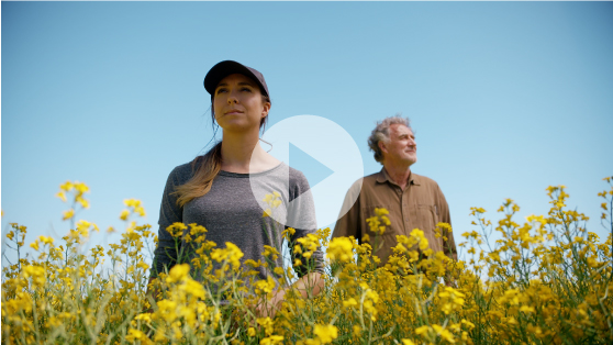 Introducing TruFlex™ canola with Roundup Ready® Technology.